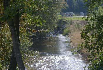 Hochwasserschutz Moosbach-Waasen Bild 5