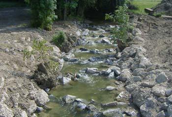 Hochwasserschutz Moosbach-Waasen Bild 6