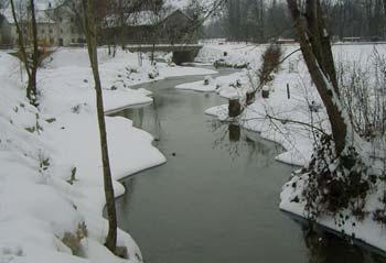 Hochwasserschutz Moosbach-Waasen Bild 9